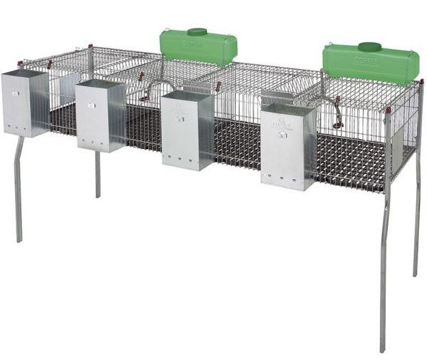 Cage à lapins PENTA 4