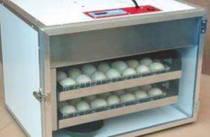 Incubator with automatic egg turning